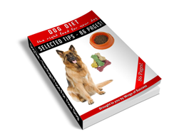 Free MRR eBook – Dog Diet – The Right Food for Your Dog