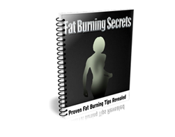 Free PLR eBook – Fat Burning Secrets