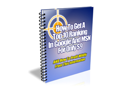 How to Get a Top Ranking in Google and MSN for Only $9