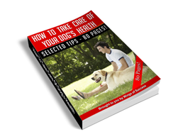 Free MRR eBook – How to Take Care of Your Dog's Health