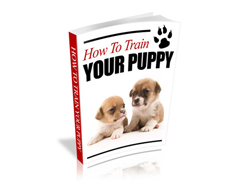 FI-How-to-Train-Your-Puppy