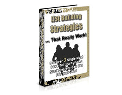 Free PLR eBook – List Building Strategies that Really Work