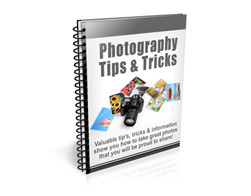 Free PLR Newsletter – Photography Tips and Tricks