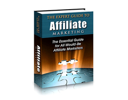 Free PLR eBook – The Expert Guide to Affiliate Marketing