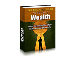 Free PLR eBook – The Expert Guide to Pursuing Wealth
