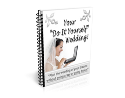 Free PLR Newsletter – Your Do it Yourself Wedding